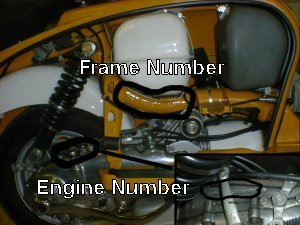 Where to find your frame number
