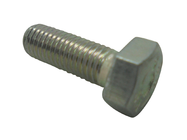 M6 * 25 Hex Set Bolt (SS)