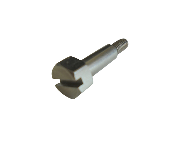 Gear/Throttle Roller Screw Stainless